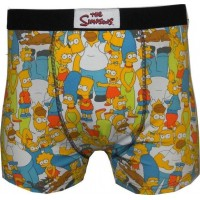 The Simpsons Kalsonger Springfield 2 pack