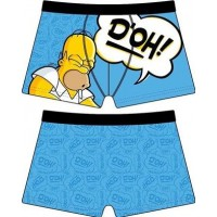 The Simpons Kalsonger Homer