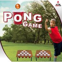 Pong Game Utomhusspel