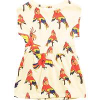 Dress Papegojan