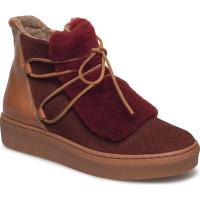 Anne Low Lace Shoes