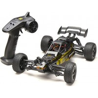 HBXRadiostyrd Off-road bil, Survivor Buggy 4WD, Yellow